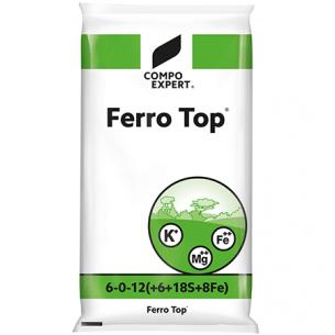 ferrotop.jpg