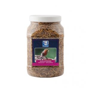 Mehlwürmer für Vögel