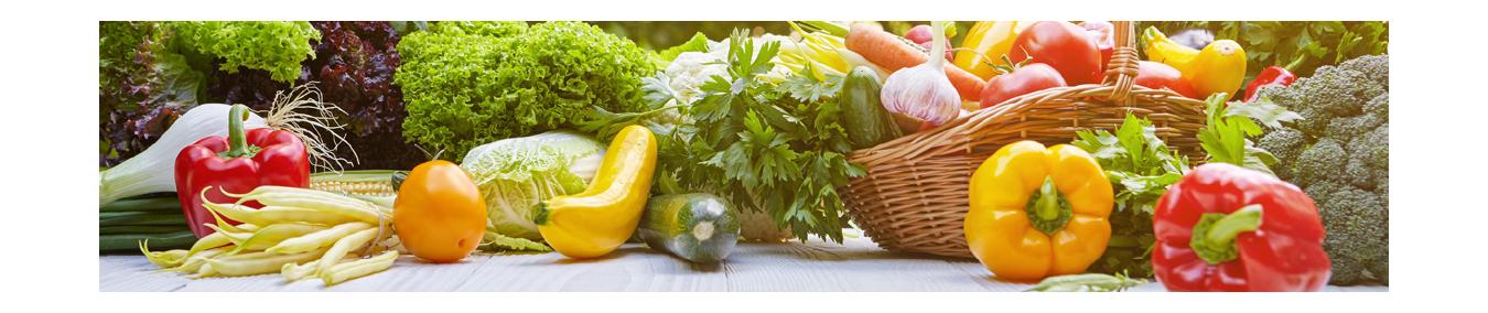 Gemüsesamen | Samen für Gemüse |Gemüse einsäen