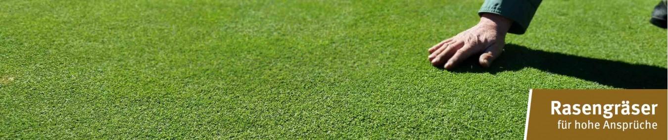 Rasengräser von Samen Schwarzenberger