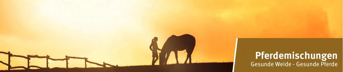 Pferdeweide   Pferdekoppel   Futter für Pferde