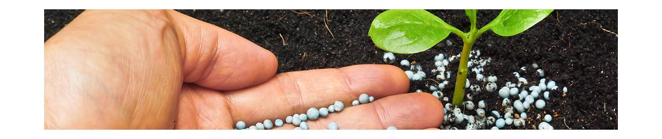 Dünger & Flüssigdünger für fruchtbare Böden