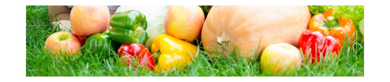 Nachhaltige Biodünger|Maltaflor|Dünger Gemüse